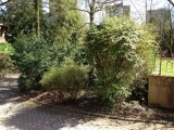 Gartenpflege Mülheim