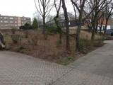 Gartenpflege Duisburg