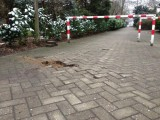 Hof pflastern Duisburg
